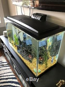 30 Gallon Fish Tank with Furniture Piece, Filter, Heater & Everything In Pics